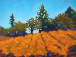 Vineyard landscape painting, wine country landscape art, by Karen Lynn Ingalls